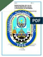LEY DEL ENFERMERO PERUANO - PAE - SOAPIE