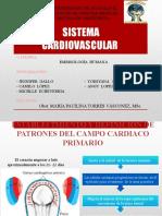 SISTEMA CARDIOVASCULAR EMBRIONARIO.pptx
