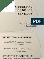 INTERROGATORIO CABEZA, CUELLO Y O. DE LOS SENTIDOS (1).pptx