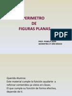permetro5-111216065025-phpapp02