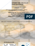 LABORATORIO DE CELULAS COMPARATIVAS.pptx