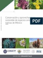 Conservaci_n_y_aprovechamiento_sostenible_de_especies_ornamentales_de_M_xico
