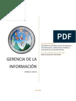 Gerencia de la Informacion Definicion