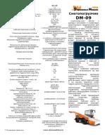 DM-09.pdf