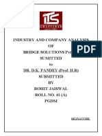 BRIDGE SOLUTIONS Pvt Ltd 12