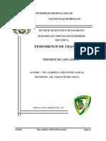 Capa_limite_Solucion_de_las_ecuaciones_d.doc