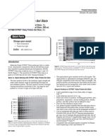 SYPRO® Ruby Protein Gel Stain Instruction Manual (Invitrogen)
