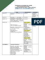 PSICOPATOLOGIA parcelador.docx