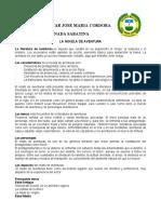 LA NOVELA DE AVENTURA.docx