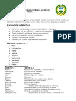 EL PERIODICO.docx