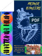 ANATOMÍA INFORME.pdf