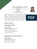CURRICULO TAREA