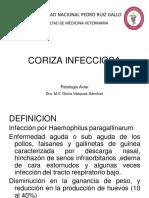 06-CORIZA INFECCIOSA