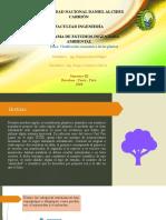 Clasificacion Taxonomica de Las Plantas