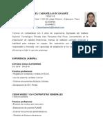 CURRICULO MERLY CABANILLAS C.docx