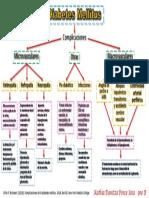 Diabetes Mellitus complicaciones.pdf