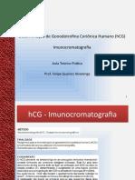 Aula hCG Imunocromatográfico
