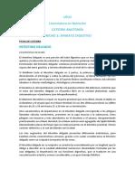 Ficha de Cátedra - Anatomía del Intestino Delgado