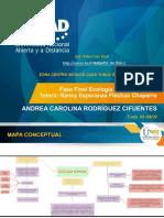 fase final_Andrea-Rodríguez
