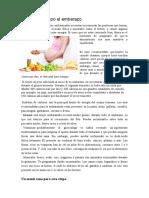 dieta-para-el-embarazo.docx