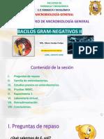 PRÁCTICA 10 MICROBIOLOGÍA GENERAL_actualizado