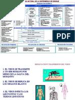 historia natural del denge.ppt