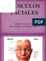 MUSCULOS FACIALES-1_6747.pptx