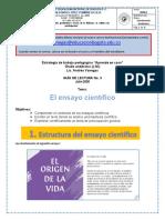 ACTIVIDAD 3 ESPAÑOL ONCE