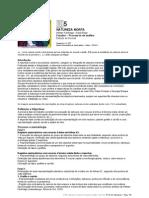 UT5 natureza morta Processos análise 12P