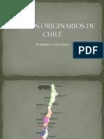 Pueblos originarios de chilenos