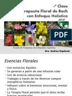 1º-Clase-Curso-T.-Floral.pptx