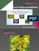 Clase-nº-6.pptx