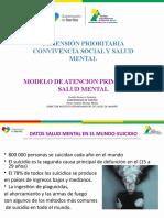 DIMENSION CONVIVENCIA SOCIAL Y SALUD MENTAL Y MAPSM