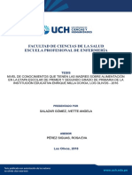 Salazar_IA_tesis_enfermeria_uch_2018