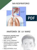 1 Anatomia y FISIOLOGIA DE LA NARIZ 1.pdf