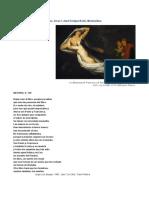 Análisis Del Canto v Del Infierno. Prof. María José Cardozo