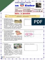 ARTMÉTICA 4° 31-08-20.pdf