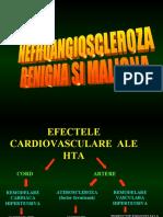 Nefroangioscleroza Benigna Si Maligna