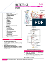 OB 1 - 1.02 Physiology of Menstruation and Decidua.pdf