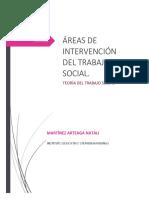 AREAS_DE_INTERVENCION_EN_TRABAJO_SOCIAL