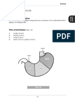 estomac.pdf