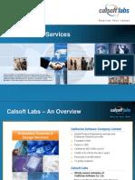CalsoftLabs_FlashExpertise_Jan2011