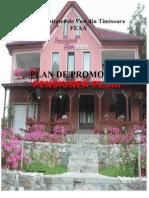 plan promovare pensiunea florii FINAL
