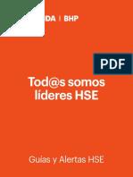 Librillo HSE (10,8 x 14) 27.03.2019.pdf