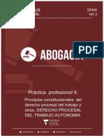 Modulo Nº3 Principios Constitucionales del Derecho Procesal del Trabajo y otros .Derecho Procesal del trabajo .Autonomia.