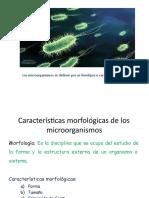 Estructura_y_funcion_celular_2