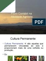 Cap 2 Cultura Permanente