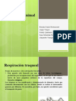 RESPIRACION ANIMAL DANY