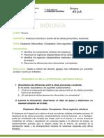 biologia_3er._curso_Plan_Especìfico