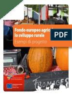 Fondo europeo agricolo per lo sviluppo rurale Esempi di progetto